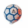 Victoriouz fodboldholder i Hvid